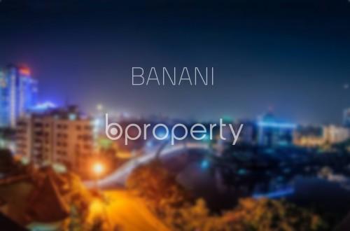 banani-2.jpg