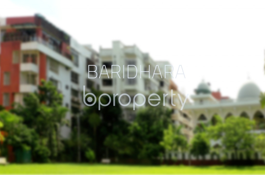 No Image - 3 Bed Apartment for Sale in Baridhara, Dhaka - 1891444