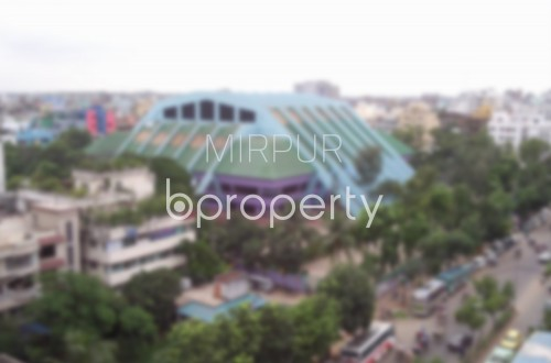 No Image - 1 Bed Apartment to Rent in Mirpur, Dhaka - 1860430