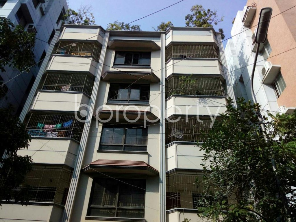 Front view - 4 Bed Apartment to Rent in Lalmatia, Dhaka - 1832756