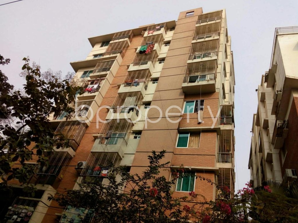 Outside view - 3 Bed Apartment to Rent in Lalmatia, Dhaka - 1833086
