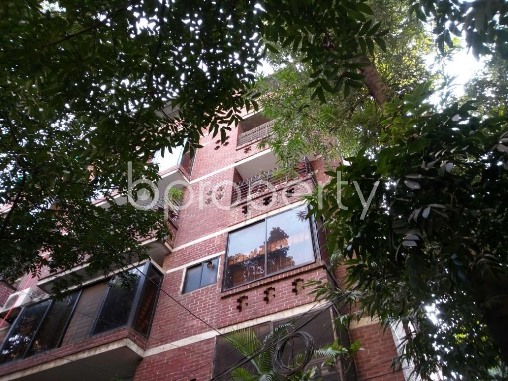 Outside view - 3 Bed Apartment to Rent in Banani, Dhaka - 1837917