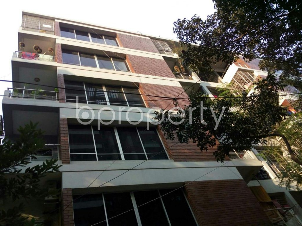 Outside view - 3 Bed Apartment to Rent in Dhanmondi, Dhaka - 1838347