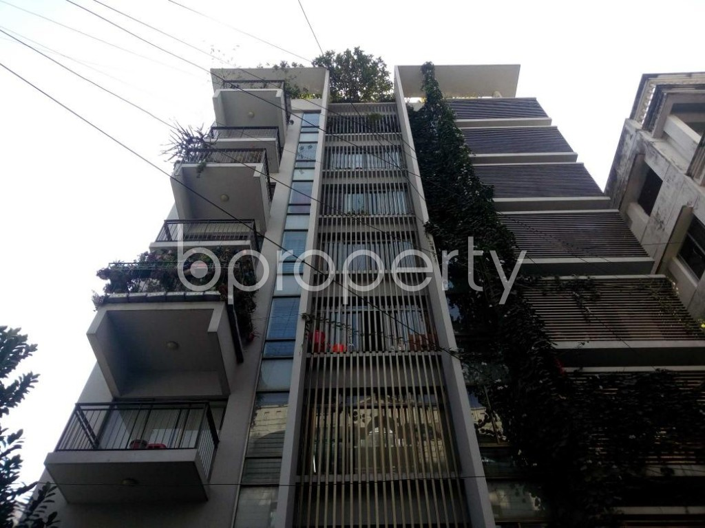 Front view - 3 Bed Apartment to Rent in Banani, Dhaka - 1839141