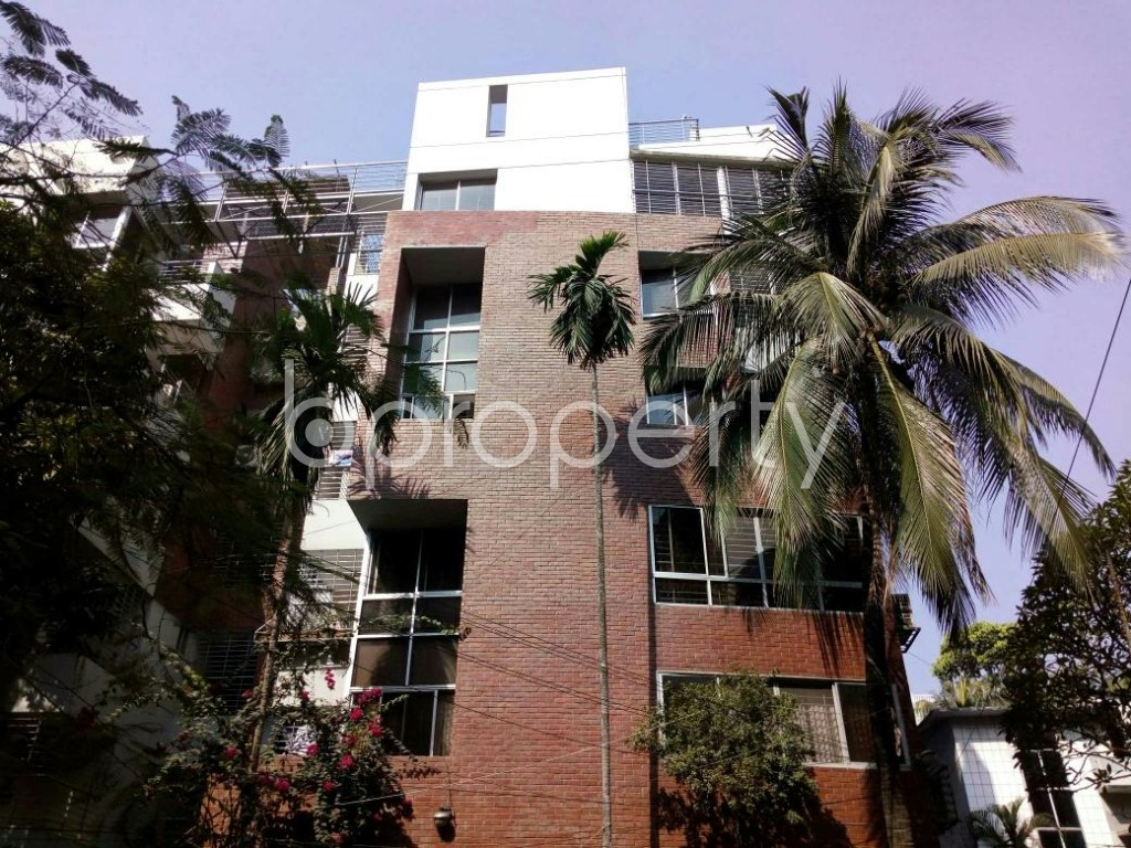 Front view - 3 Bed Apartment to Rent in Dhanmondi, Dhaka - 1839310