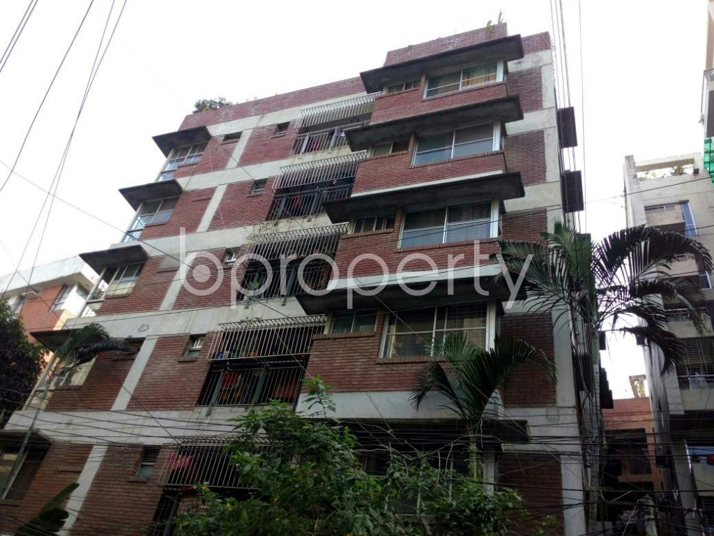 Outside view - 3 Bed Apartment to Rent in Lalmatia, Dhaka - 1841859