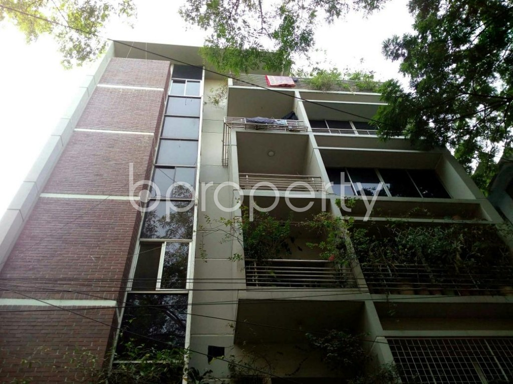 Front view - 3 Bed Apartment for Sale in Lalmatia, Dhaka - 1844128