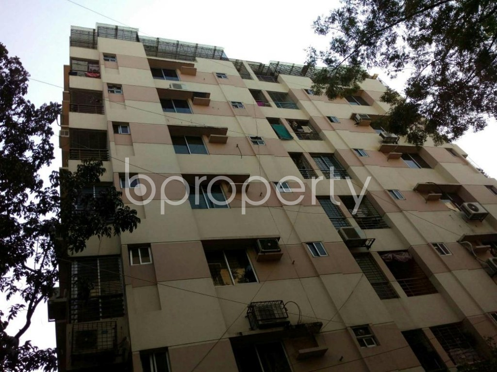 Outside view - 3 Bed Apartment to Rent in Lalmatia, Dhaka - 1847107