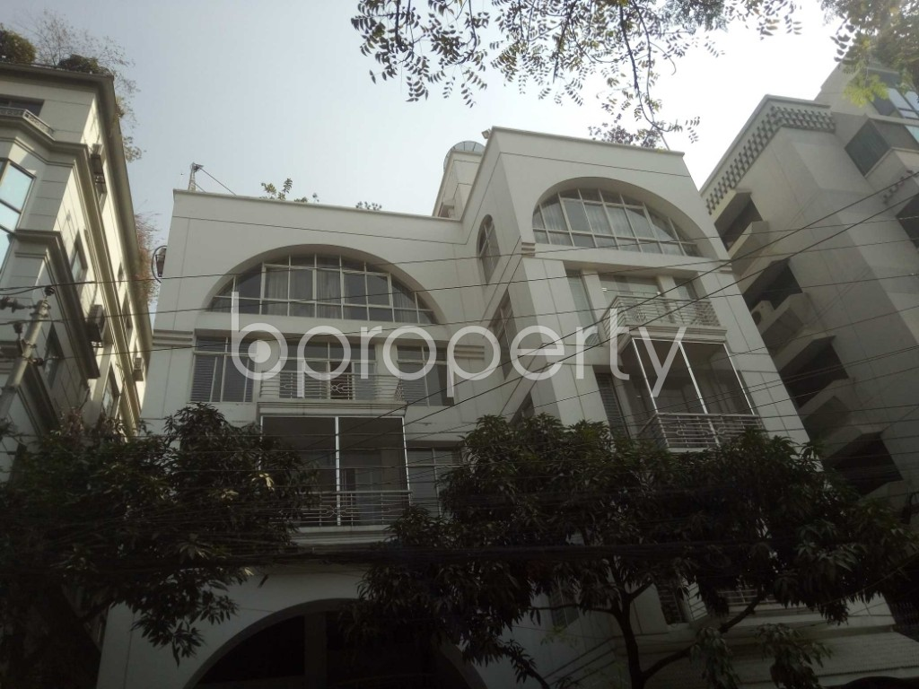 Outside view - 6 Bed Apartment to Rent in Baridhara, Dhaka - 1855923