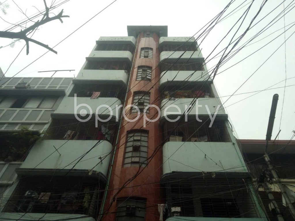 Front view - 3 Bed Apartment to Rent in Lalmatia, Dhaka - 1864433