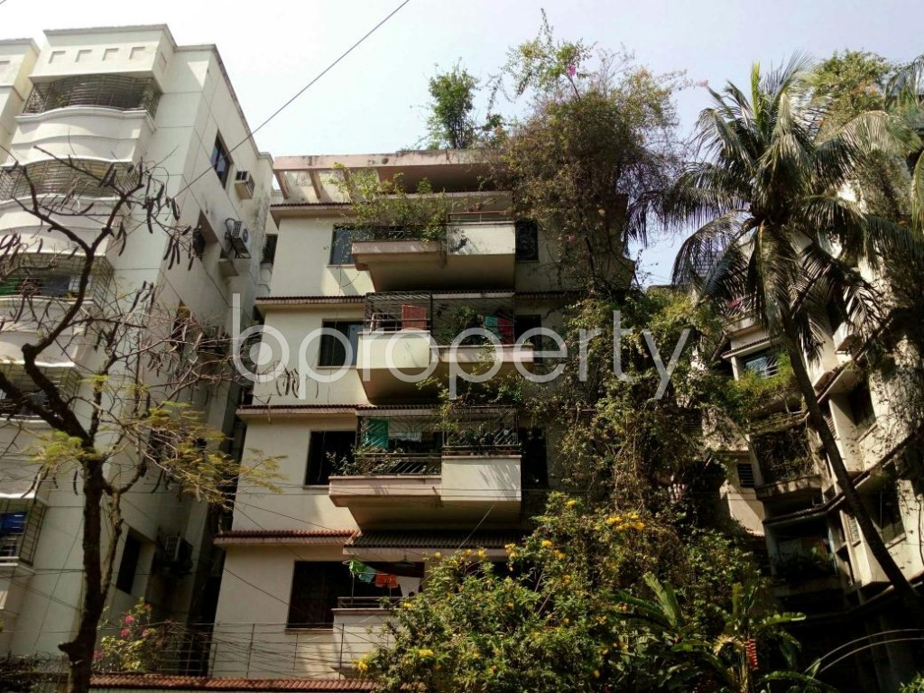 Front view - 4 Bed Apartment for Sale in Dhanmondi, Dhaka - 1869610