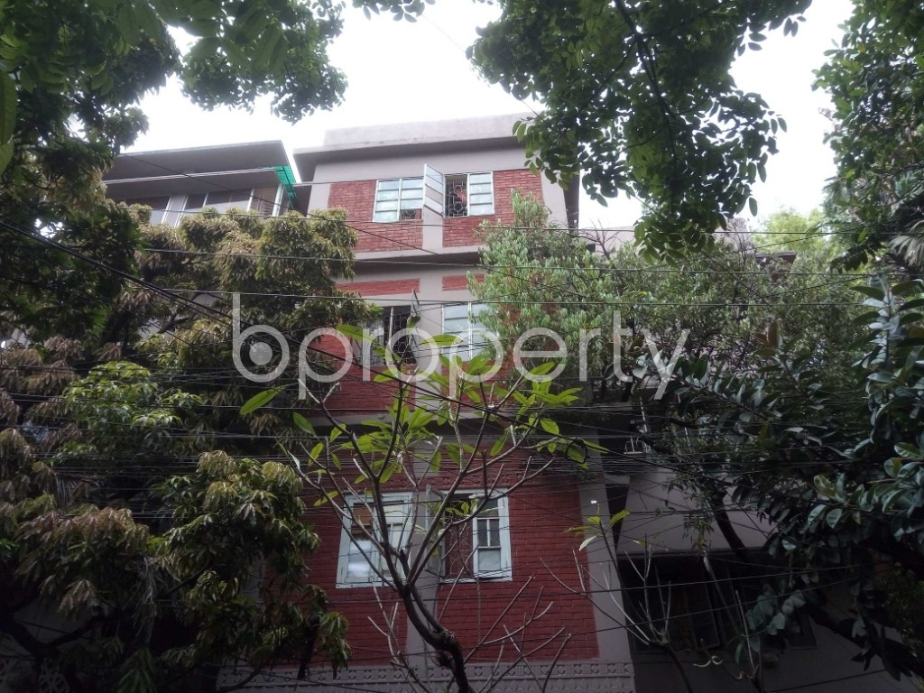 Front view - 3 Bed Apartment for Sale in Lalmatia, Dhaka - 1871097