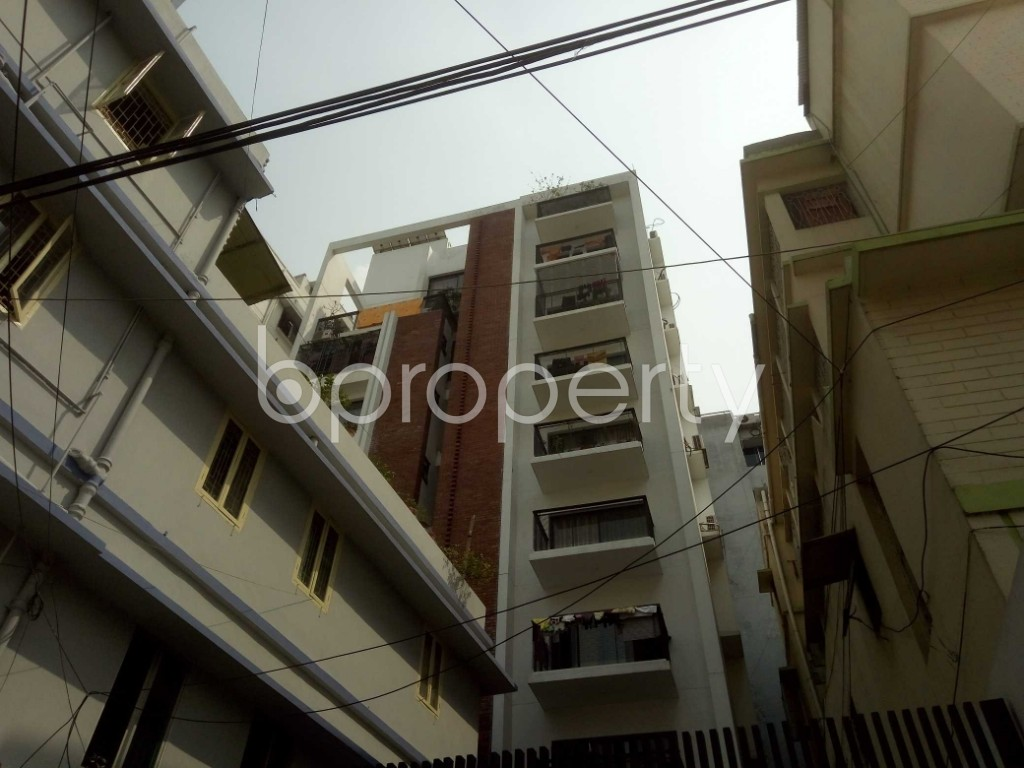 Front view - 3 Bed Apartment to Rent in Lalmatia, Dhaka - 1871708