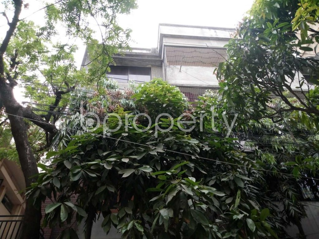 Front view - 2 Bed Apartment to Rent in Mohammadpur, Dhaka - 1872408