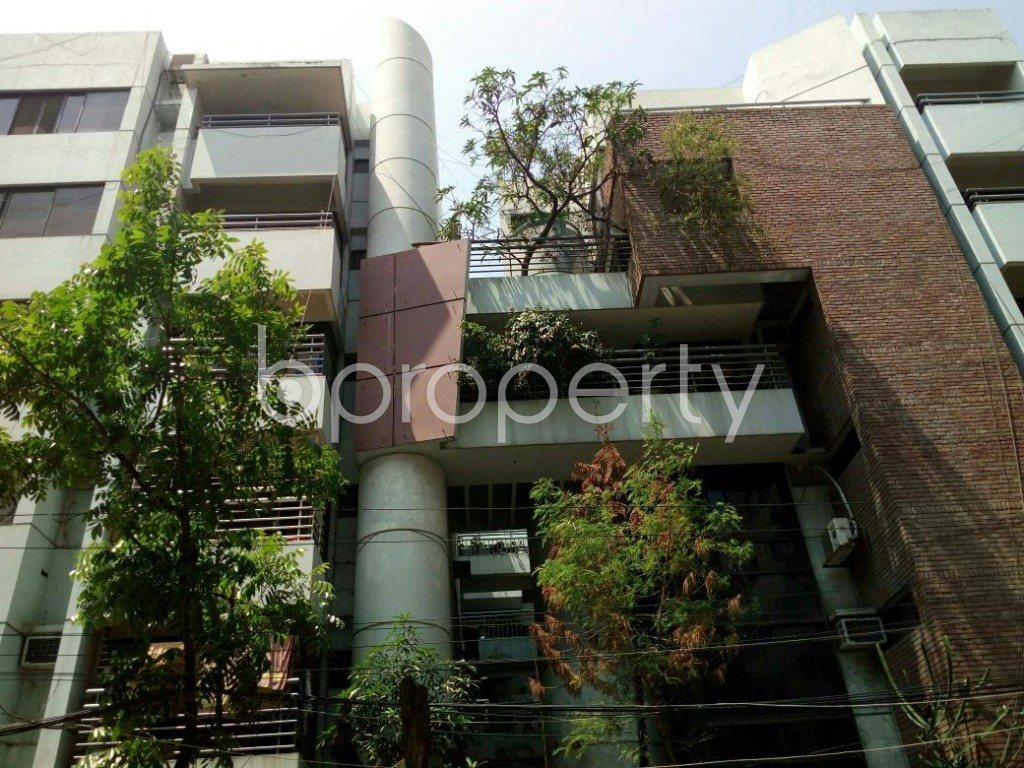 Front view - 4 Bed Apartment to Rent in Dhanmondi, Dhaka - 1875917