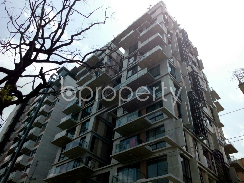 Outside view - 3 Bed Apartment for Sale in Dhanmondi, Dhaka - 1883854