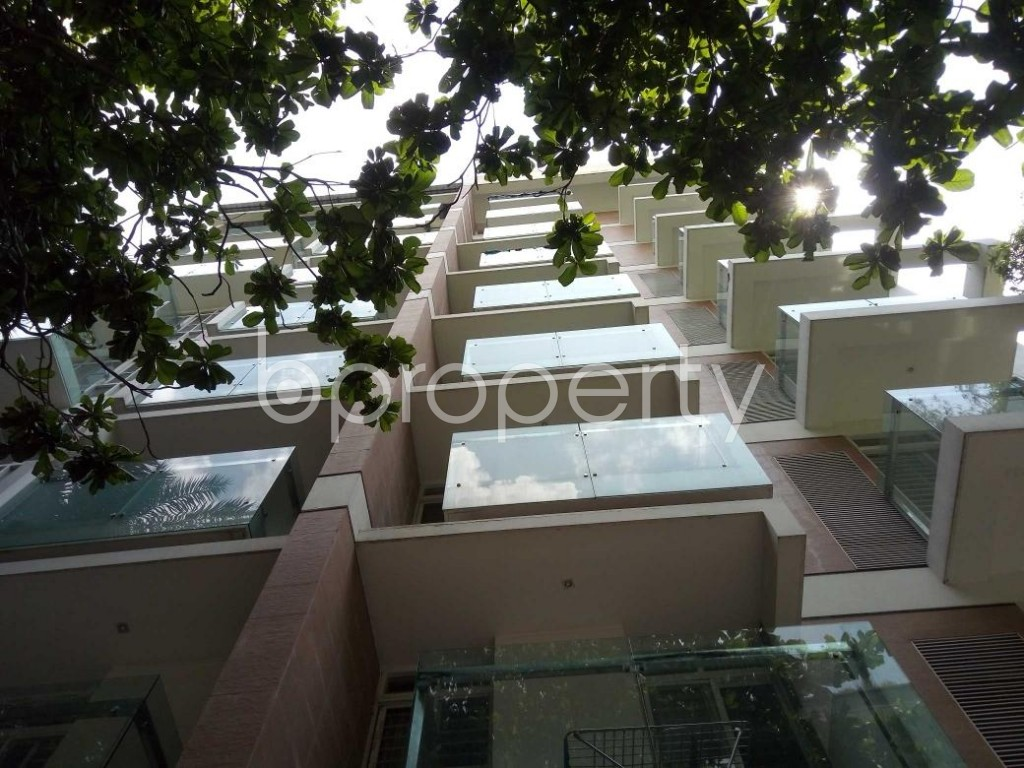 Front view - 3 Bed Apartment to Rent in Banani, Dhaka - 1884009