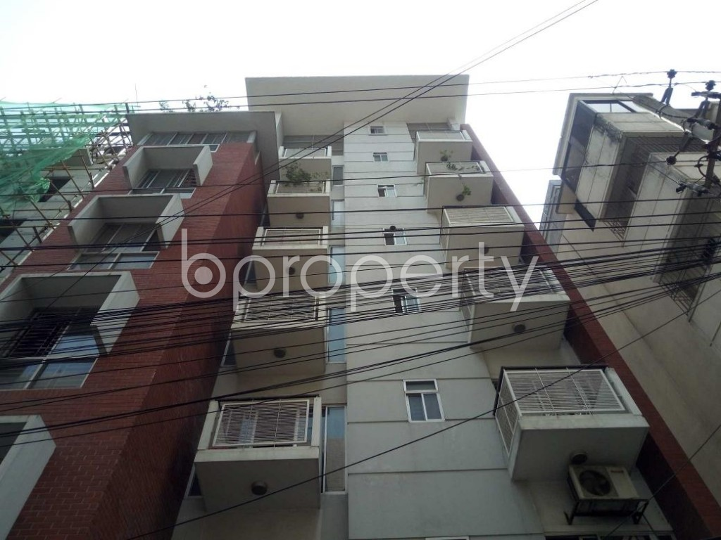 Front view - 3 Bed Apartment to Rent in Lalmatia, Dhaka - 1885589