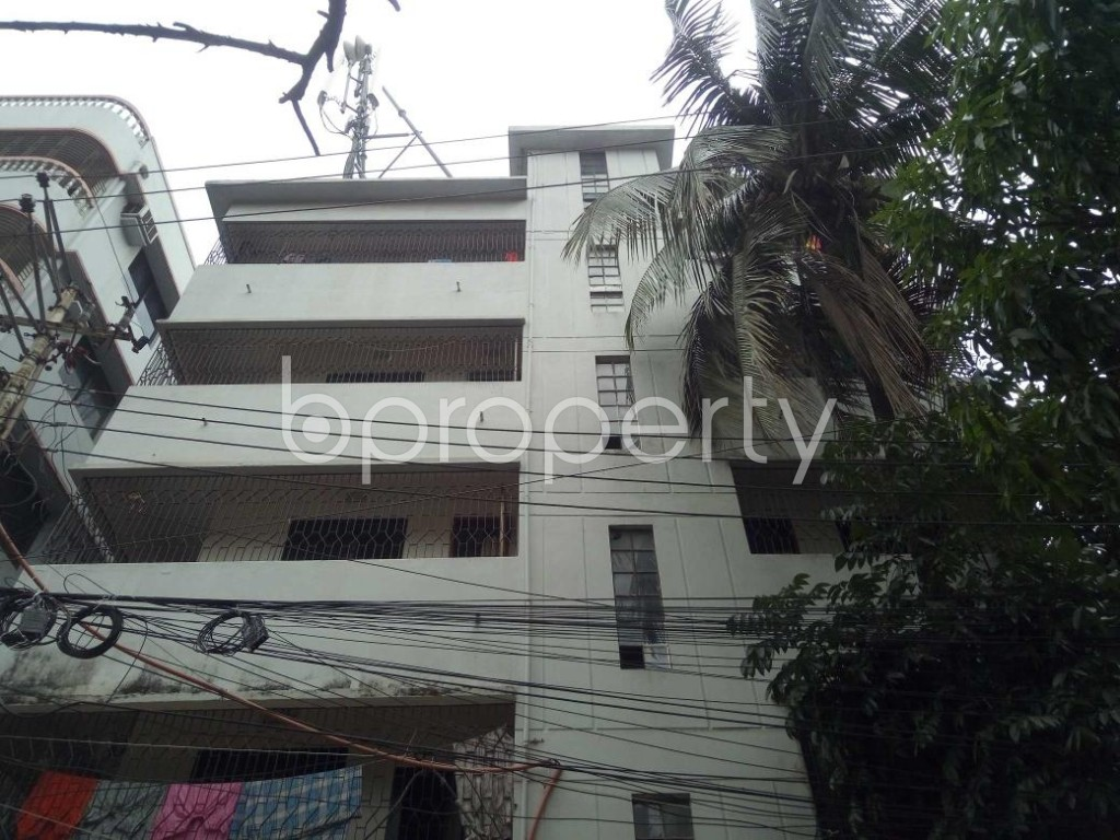 Front view - 2 Bed Apartment to Rent in Lalmatia, Dhaka - 1886550