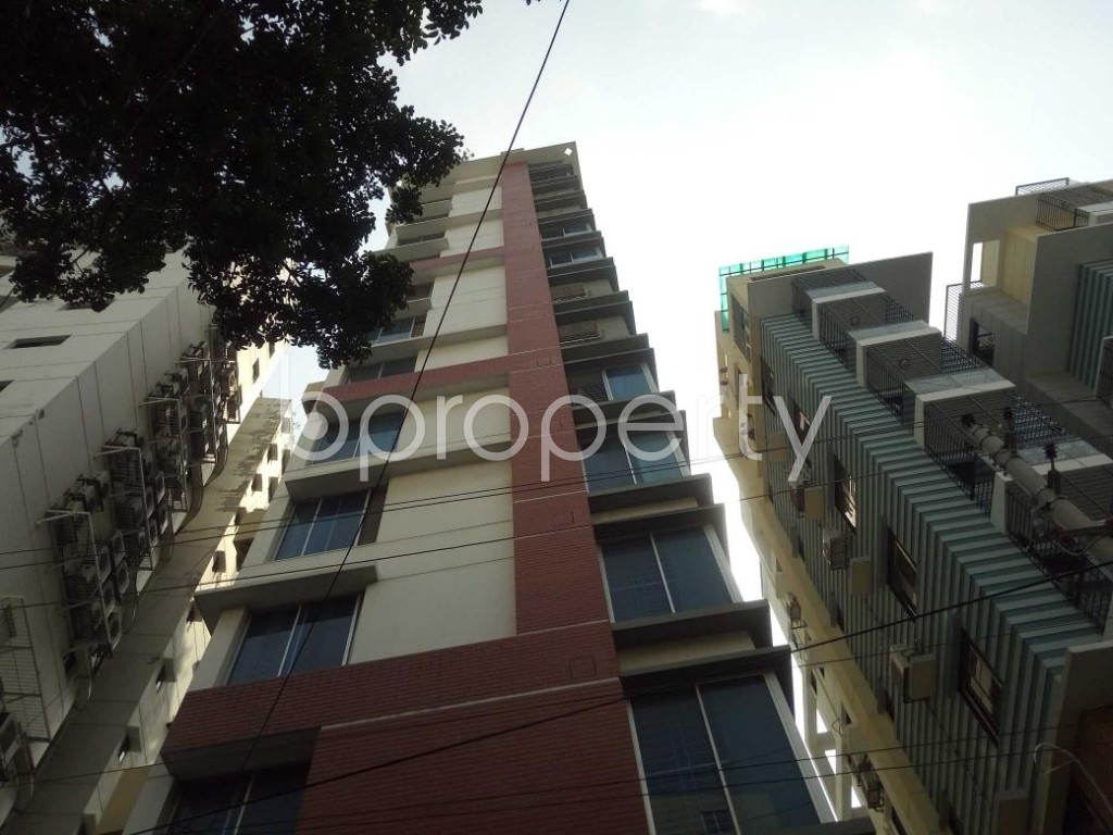 Front view - 3 Bed Apartment to Rent in Lalmatia, Dhaka - 1886864