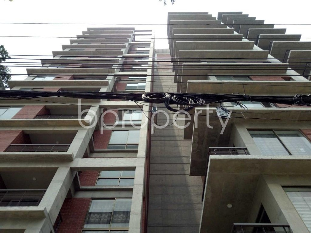 Front view - 3 Bed Apartment to Rent in Bashundhara R-A, Dhaka - 1889129
