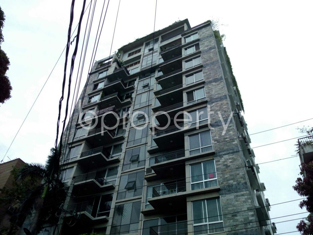 Outside view - 3 Bed Apartment to Rent in Dhanmondi, Dhaka - 1899781