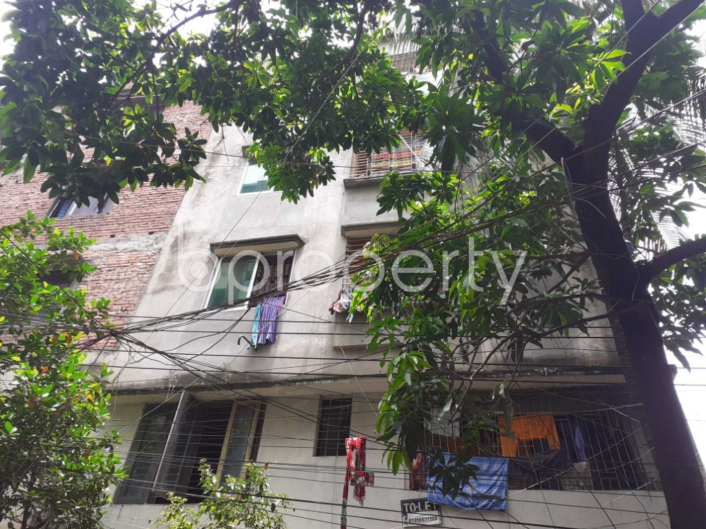 Outside view - 2 Bed Apartment to Rent in Mohammadpur, Dhaka - 1908143