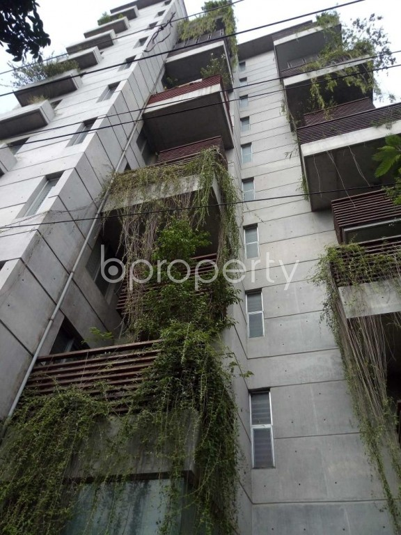 Outside view - 3 Bed Apartment to Rent in Banani, Dhaka - 1911179