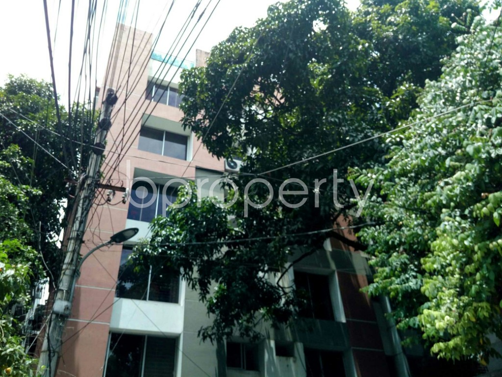 Outside view - 3 Bed Apartment to Rent in Dhanmondi, Dhaka - 1912645