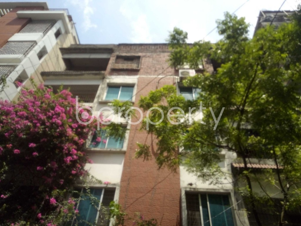 Outside view - 4 Bed Apartment to Rent in Baridhara, Dhaka - 1916453