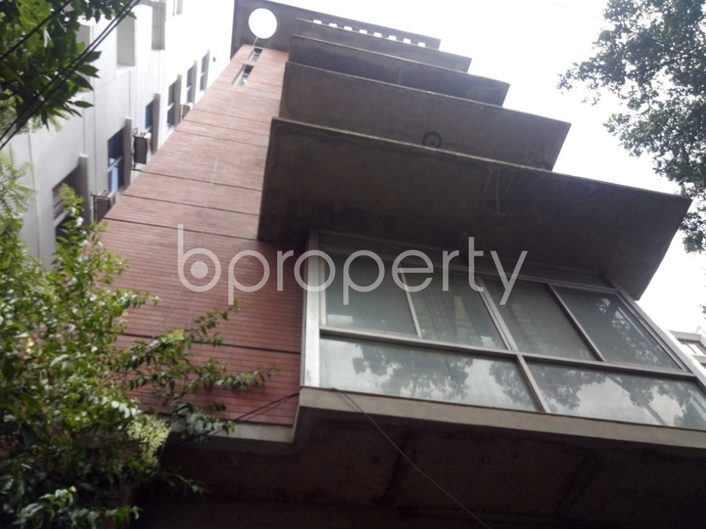 Outside view - 3 Bed Apartment to Rent in Banani, Dhaka - 1918177