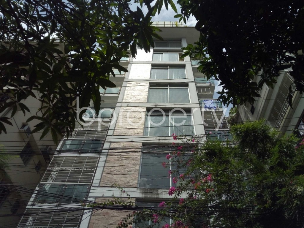 Outside view - 3 Bed Apartment to Rent in Banani, Dhaka - 1918630