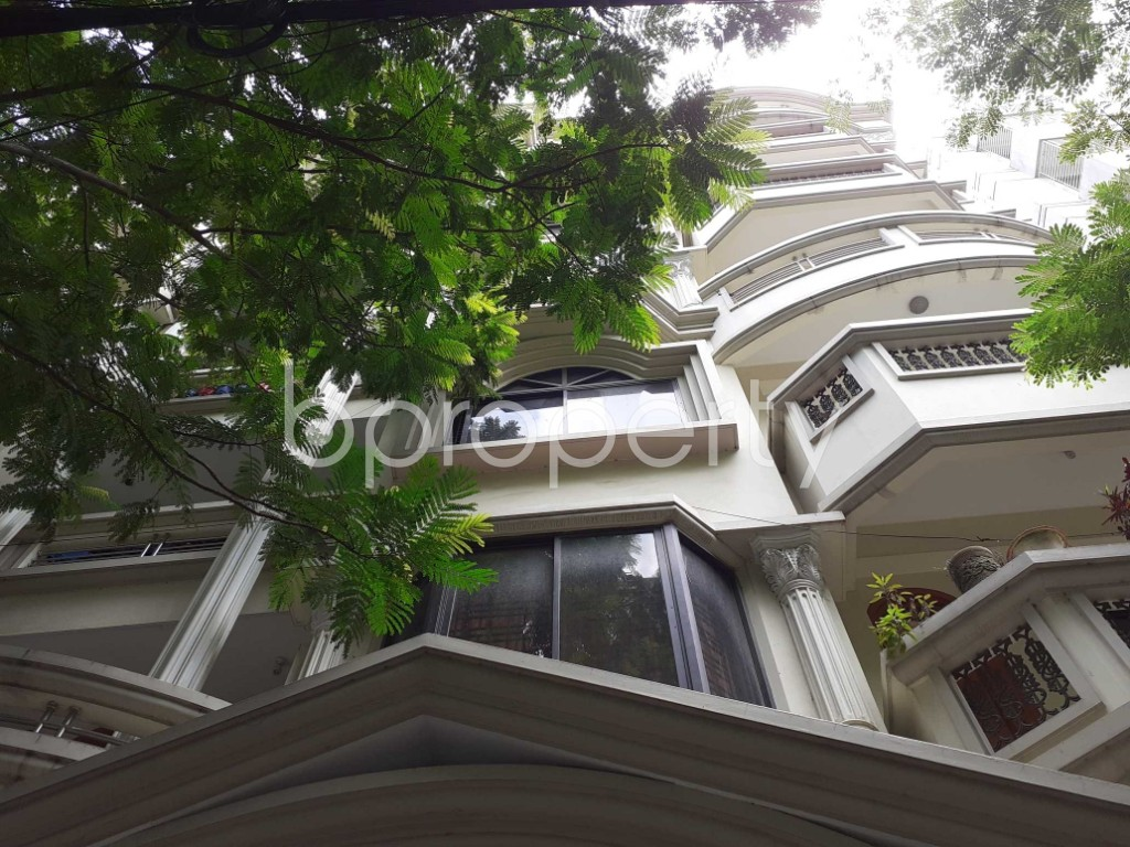 Front view - 4 Bed Apartment to Rent in Bashundhara R-A, Dhaka - 1919900