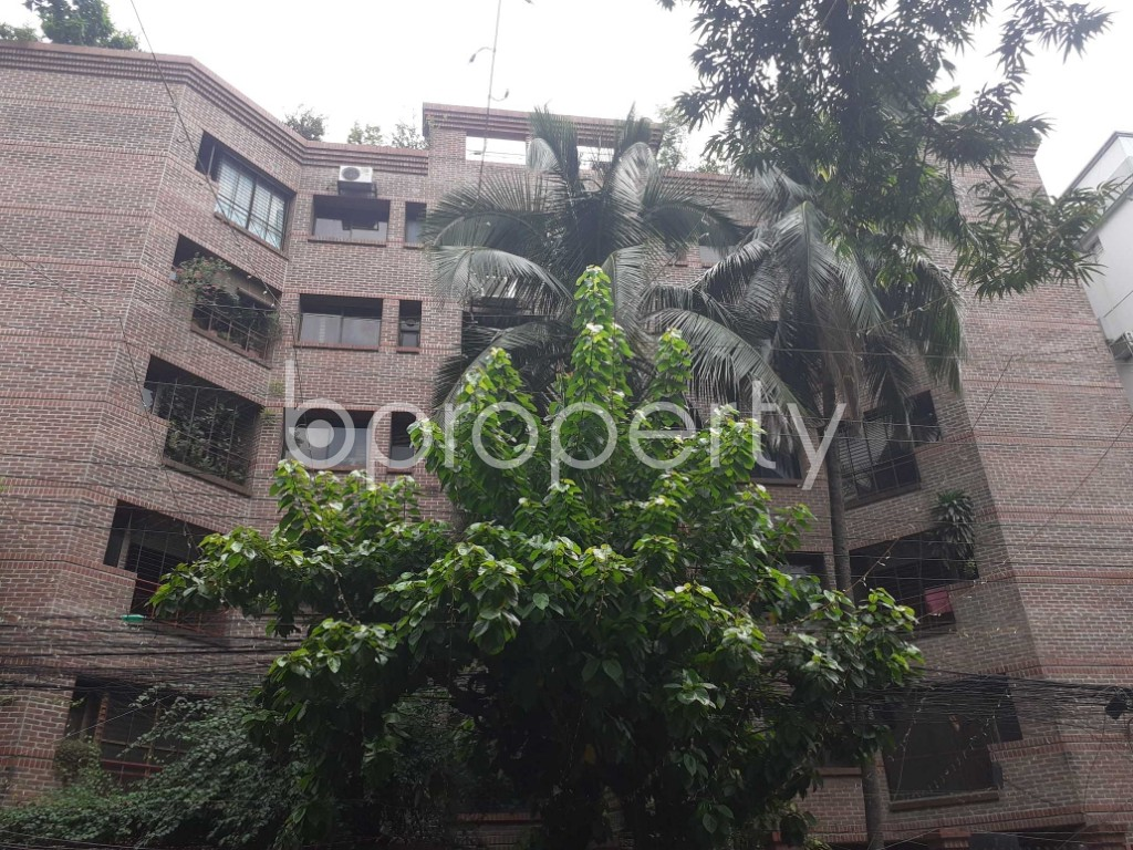 Front view - 4 Bed Apartment to Rent in Dhanmondi, Dhaka - 1920117