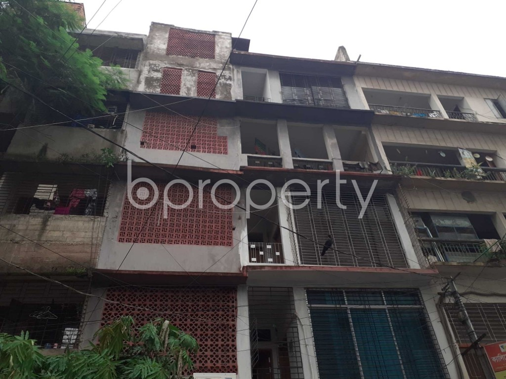 Front view - 2 Bed Apartment to Rent in Mohammadpur, Dhaka - 1920484