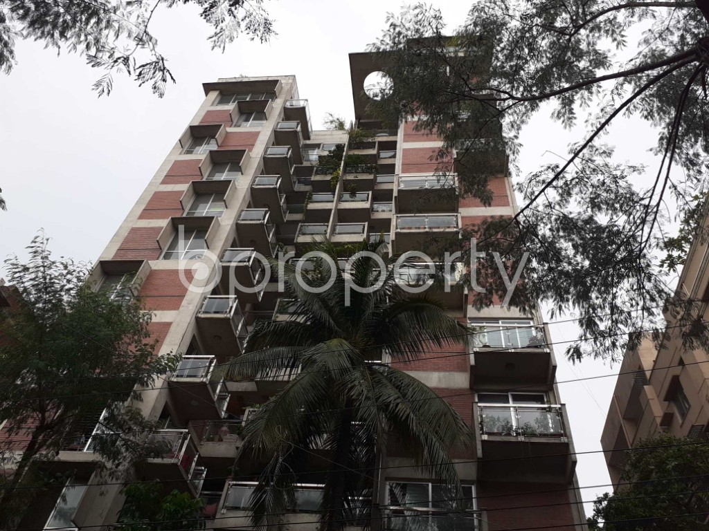 Front view - 4 Bed Apartment to Rent in Dhanmondi, Dhaka - 1920497