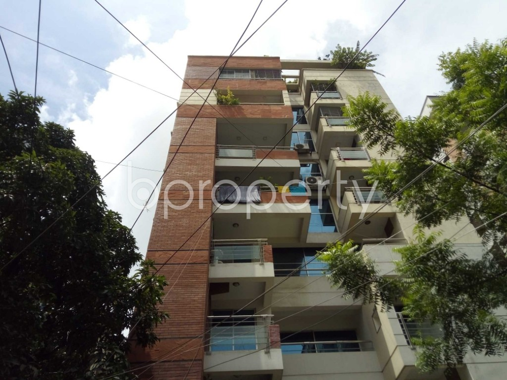 Outside view - 3 Bed Apartment to Rent in Banani, Dhaka - 1920371
