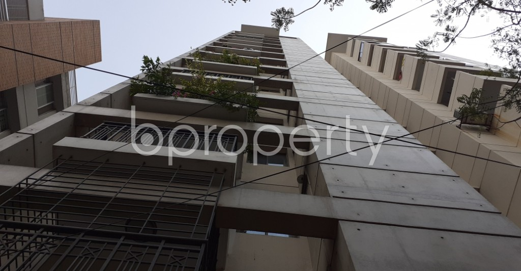 Outside view - 3 Bed Apartment to Rent in Lalmatia, Dhaka - 1929212