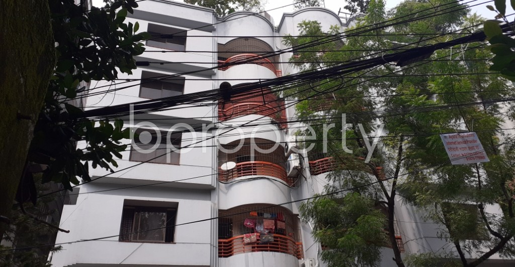 Outside view - 3 Bed Apartment to Rent in Lalmatia, Dhaka - 1930277