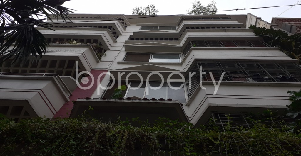 Front view - 3 Bed Apartment to Rent in Bashundhara R-A, Dhaka - 1930457