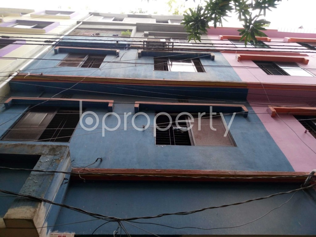 Front view - 3 Bed Apartment to Rent in Mirpur, Dhaka - 1931521