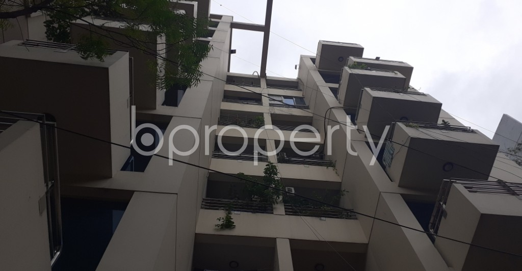 Outside view - 3 Bed Apartment to Rent in Lalmatia, Dhaka - 1931668