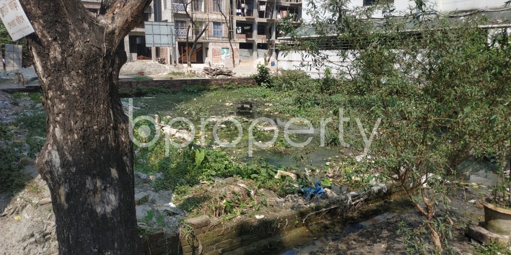 Front view - Plot for Sale in Bashundhara R-A, Dhaka - 1932561