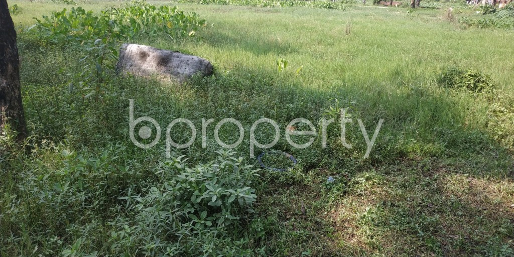 Front view - Plot for Sale in Bashundhara R-A, Dhaka - 1932592