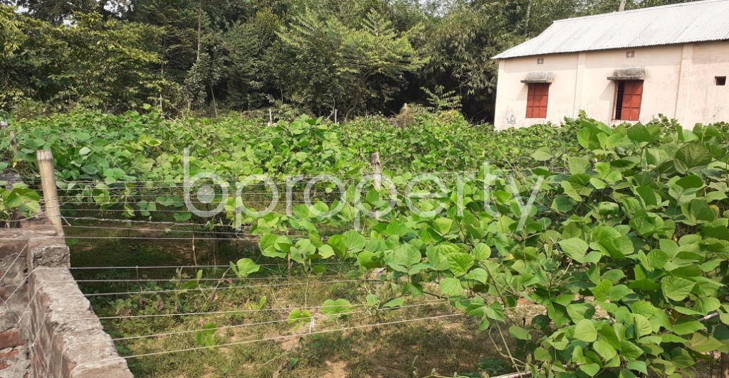 Outside view - Plot for Sale in Savar, Dhaka - 1936139