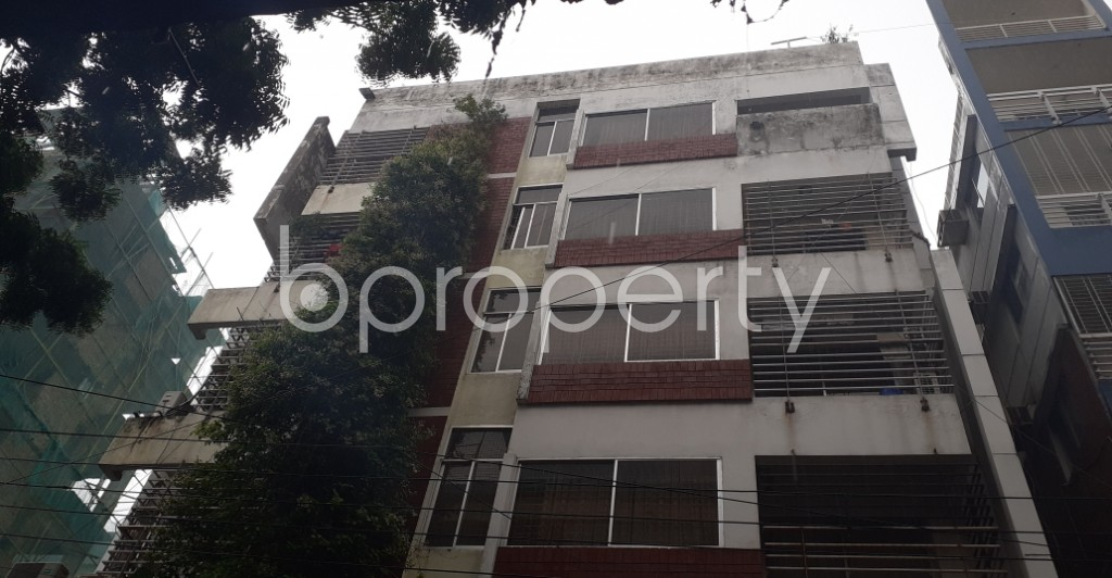 Outside view - 3 Bed Apartment to Rent in Lalmatia, Dhaka - 1937505