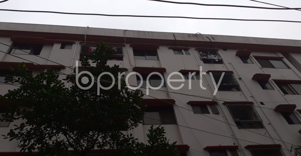 Outside view - 3 Bed Apartment to Rent in Lalmatia, Dhaka - 1937764