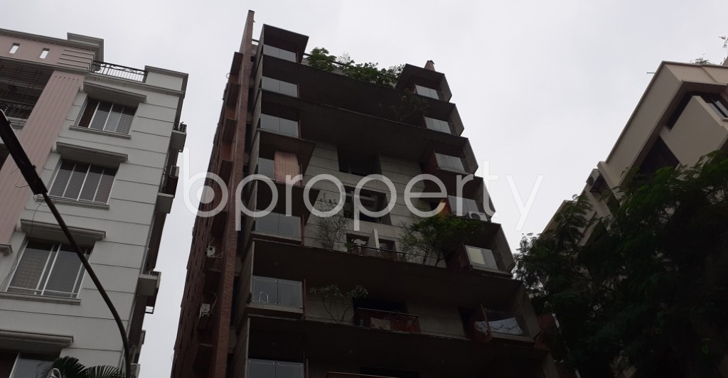 Outside view - 4 Bed Apartment to Rent in Lalmatia, Dhaka - 1938231