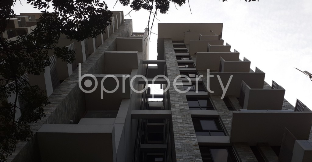 Front view - 4 Bed Apartment for Sale in Dhanmondi, Dhaka - 1940305