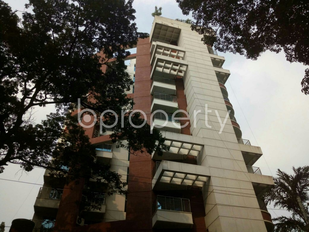 Front view - 3 Bed Apartment to Rent in Banani, Dhaka - 1941786